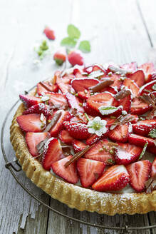 Close-up of homemade strawberry tart - DREF00029