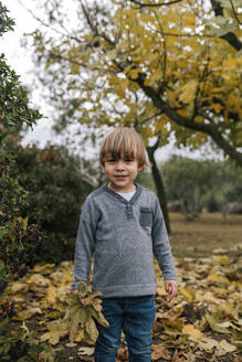 Portrait of little boy collecting leaves in autumn - GRCF00038