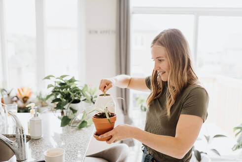 Woman watering house plants - ISF23645
