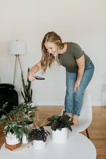 Woman taking photo of house plants with mobile phone - ISF23675