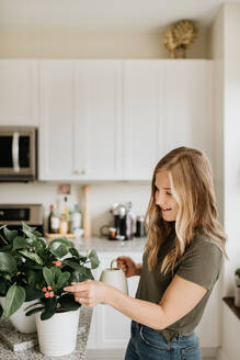 Woman watering house plants - ISF23678