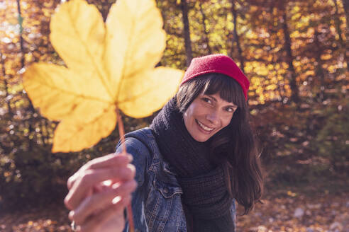 Woman wearing red woolly hat holding yellow autumn leaf - DHEF00023