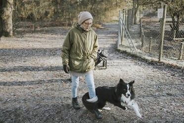 Woman playing with border collieon forest track - DWF00527