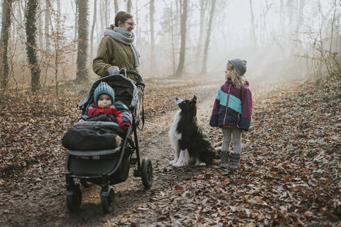 Mother with daughters and border collie during forest walk in autumn - DWF00539
