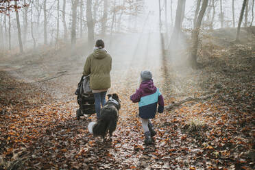 Mother with children and border collie during forest walk in autumn - DWF00551