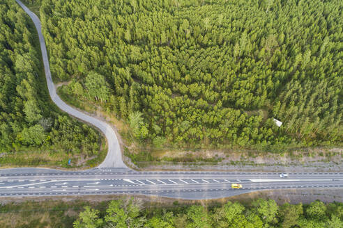 Aerial view of road and forest - JOHF05411