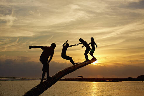Silhouette carefree kids playing on tree trunk over sunset ocean, La Ticla, Michoacan, Mexico - FSIF04548