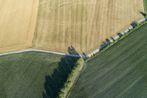 Germany, Bavaria, Franconia, Aerial view of corn fields and dirt road - RUEF02586
