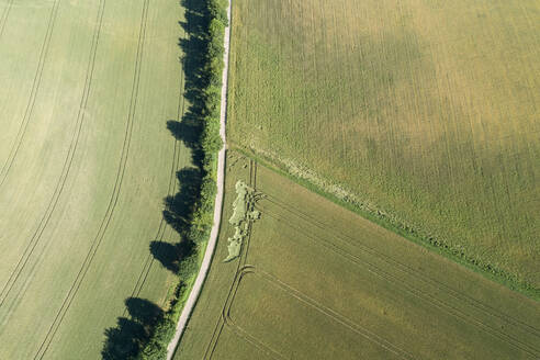 Germany, Bavaria, Franconia, Aerial view of green fields and dirt road - RUEF02589