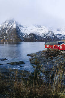 Red huts at the coast, Hamnoy, Lofoten, Norway - DGOF00091