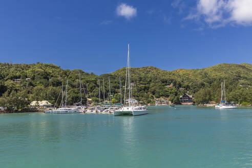 Seychelles, Praslin Island, Sailboats moored in marina - MABF00546