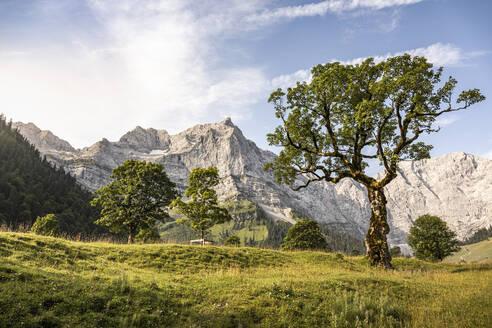 Grosser Ahornboden, Hinterriss, Karwendel, Tyrol, Austria - MSUF00199