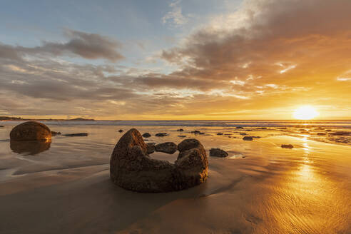 New Zealand, Oceania, South Island, Southland, Hampden, Otago, Moeraki, Koekohe Beach, Moeraki Boulders Beach, Moeraki Boulders, Round stones on beach at sunrise - FOF11684