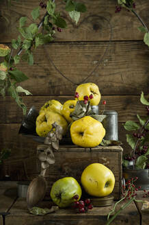 Quinces (Cydonia oblonga) with leaves and rose hips on rustic wooden crate - ASF06558