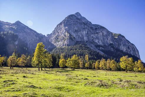 Grosser Ahornboden in Karwendel mountains in autumn, Hinteriss, Austria - MAMF01100