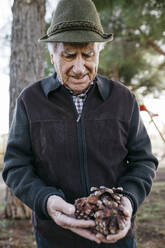 Old man looking at pine cones in his hand - JRFF04124