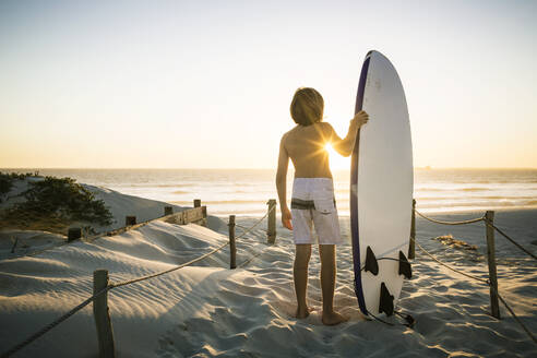 Rear view of boy with surfboard standing on the beach at sunset - SDAHF00426