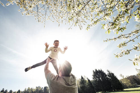Father throwing son in air - WFF00265