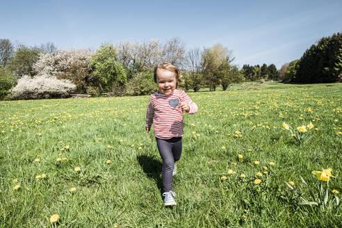 Portrait of happy little girl running on a meadow - WFF00286