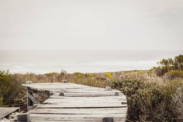 Boardwalk at the coast, Grotto Bay, South Africa - SDAHF00527