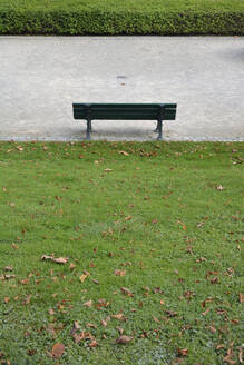 Germany, Bavaria, Munich, Empty park bench standing in front of hedge - AXF00834