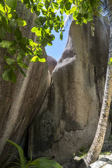 Seychelles, La Digue, Granite boulders at Anse Source dArgent - MABF00550