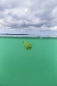 Old plastic cup littering ocean surface - CAVF75442