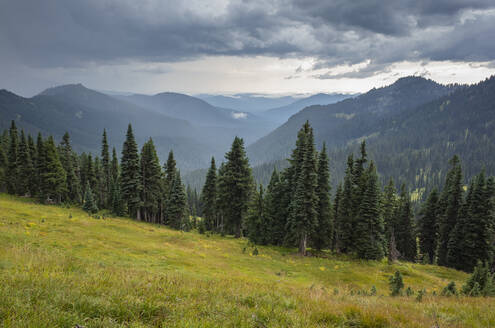 Storm clouds over Goat Rocks Wilderness, lush alpine meadow in foreground, Gifford Pinchot National Forest, Washington - MINF13897