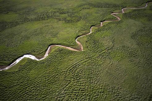 Amazing aerial landscape of flowing stream in green field - CAVF75485