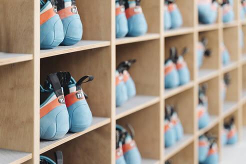 Climbing shoes in shelf - AHSF01952