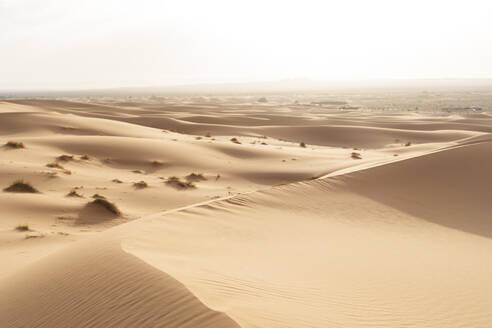 Sand dunes in Sahara Desert, Merzouga, Morocco - AFVF05552