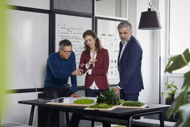 Two businessmen and businesswoman working together on a project in office - RBF07112