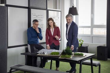 Two businessmen and businesswoman working together on a project in office - RBF07121