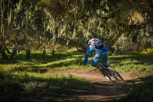 Man riding mountainbike on forest track, Fort Ord National Monument Park, Monterey, California, USA - MSUF00221