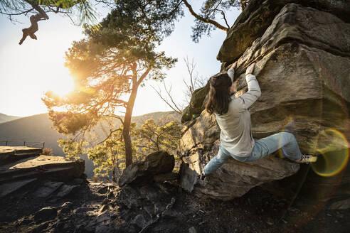 Female climber bouldering on sandstone boulder, Neustadt an der Weinstrasse, Rhineland-Palatinate, Germany - MSUF00248