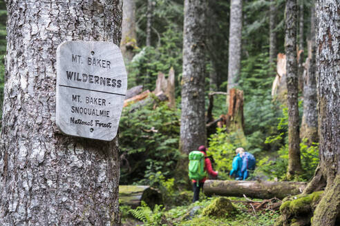 Two female hikers on a trail in the Mt. Baker Wilderness - CAVF76726