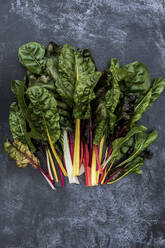 High angle close up of a bunch of freshly picked Swiss rainbow chard on grey background. - MINF14428