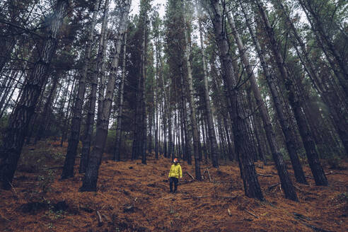 Man standing in forest, Spain - RSGF00245