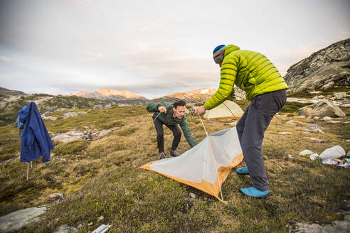 Two backpackers set up tent in alpine meadow. - CAVF77976