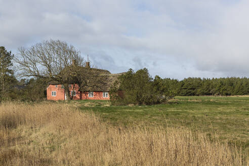Denmark, Romo, Secluded house with thatched roof - ASCF01189