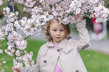 Portrait of little girl in a park standing under blossoming Japanese cherry tree - OGF00264