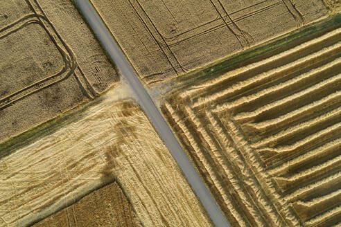 Germany, Bavaria, Drone view of country road cutting through yellow countryside fields in summer - RUEF02719