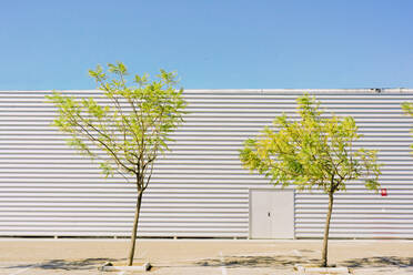 Two trees in front of industrial building - ERRF03148