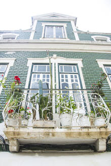 Portugal, Low angle view of potted plants blooming on balcony - FVSF00052
