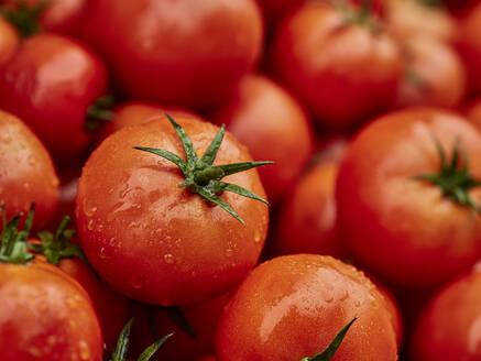 Morocco, Heap of fresh ripe tomatoes - VEGF01878