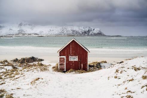 Red hut on the beach in snow, Lofoten, Norway - MPPF00716