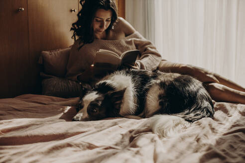 Dog lying on bed at home with owner in the background - GMLF00006