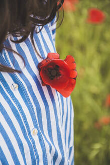 Woman wearing red poppy on her blouse, close-up - FVSF00104
