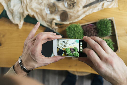Close-up of man taking smartphone picture of microgreens on table - VPIF02278