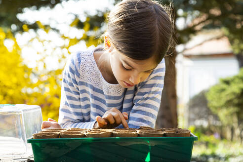 Girl looking at nursery pots with soil in her little greenhouse - LVF08799